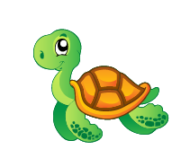 kilpikonna-01